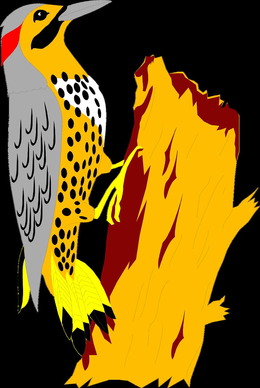 Falcon clipart illustration. Yellowhammer free stock photo