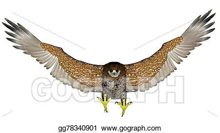 Falcon clipart in flight. Stock illustration dark flying
