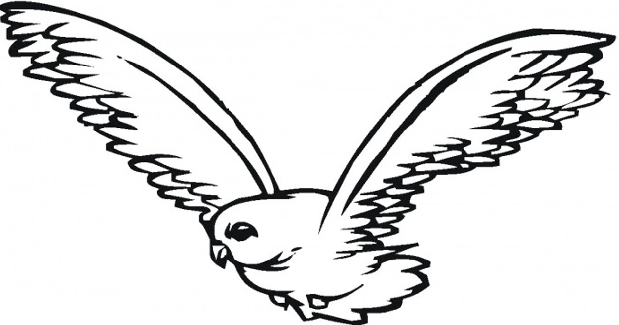 Falcon clipart large bird. Free download clip art