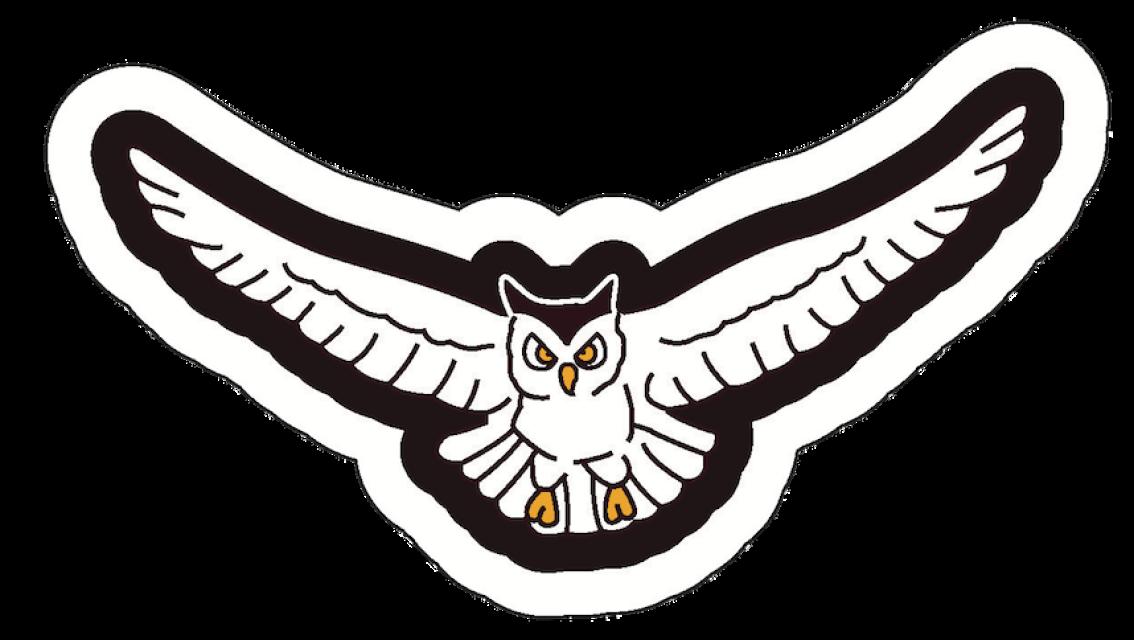 Falcon clipart mascot. Mascots
