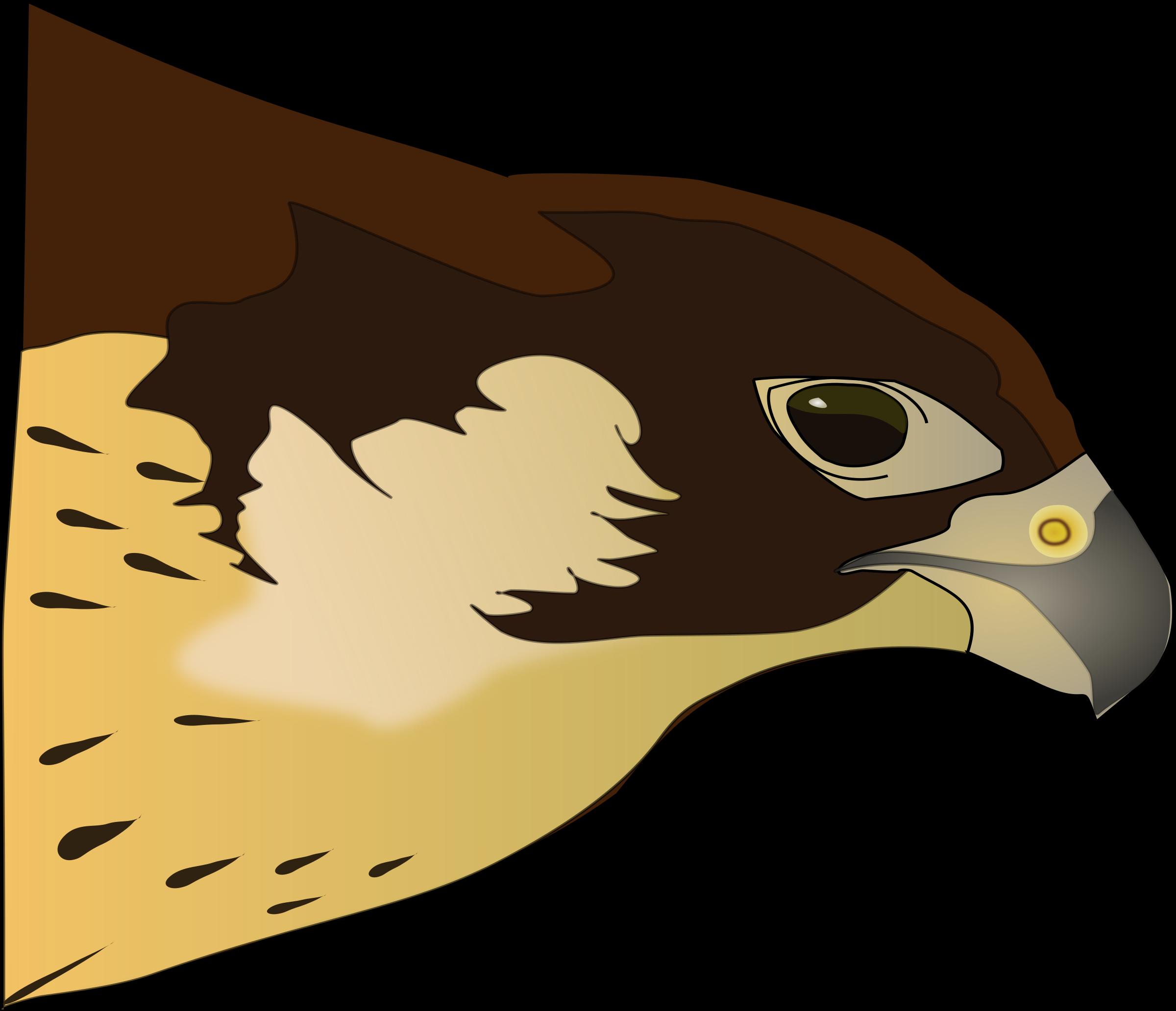 Falcon clipart prey. Halc n hawk big