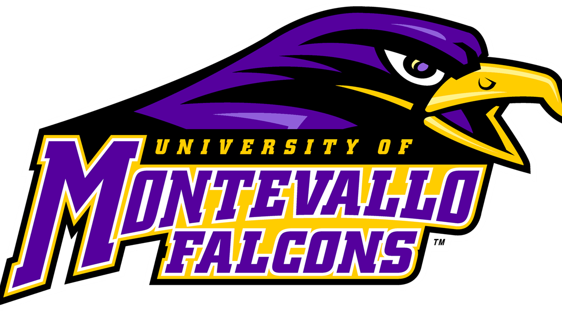 Volleyball clipart falcon. Montevallo athletics launches new