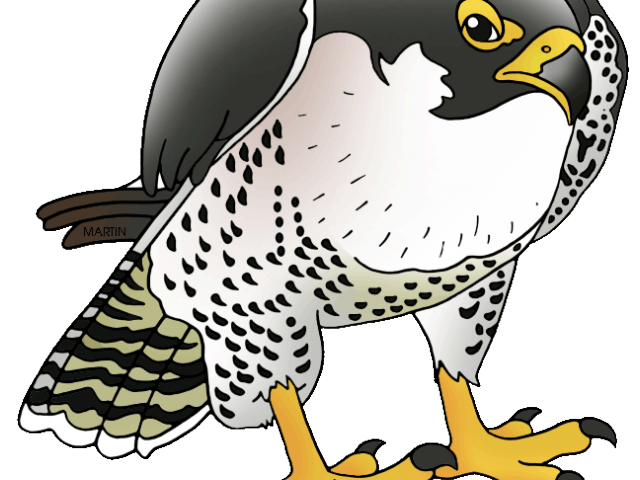 huge freebie download. Falcon clipart stencil