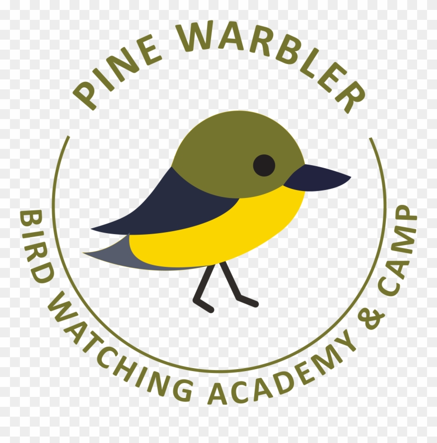 Falcon clipart yellow warbler. Pine golden winged