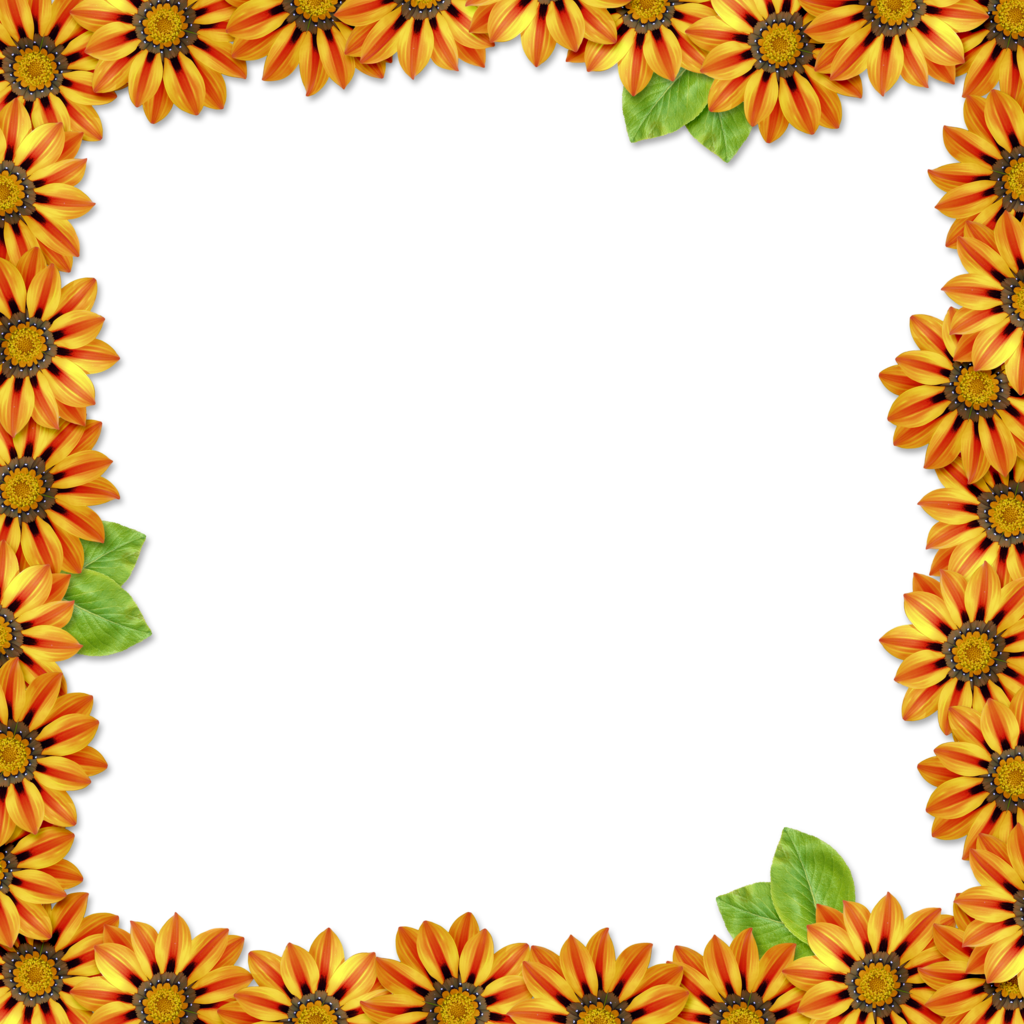 Fall border png. Orange floral high quality