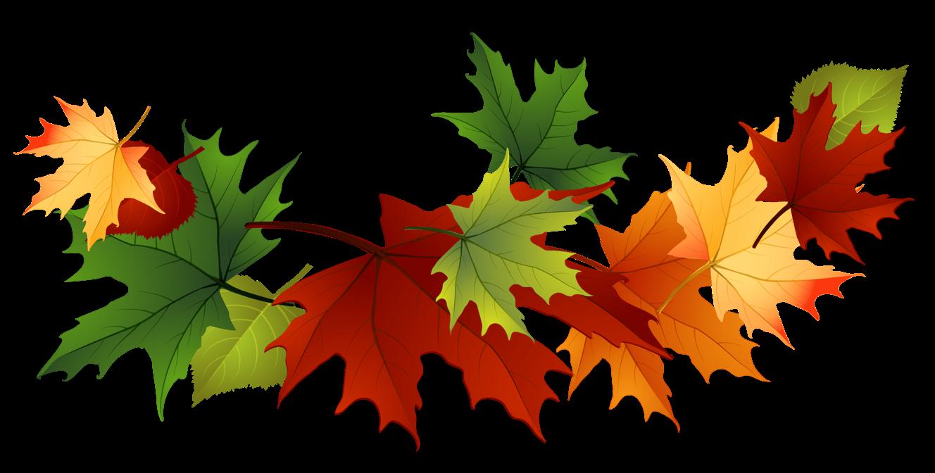Fall clipart. Cilpart precious leaves clip