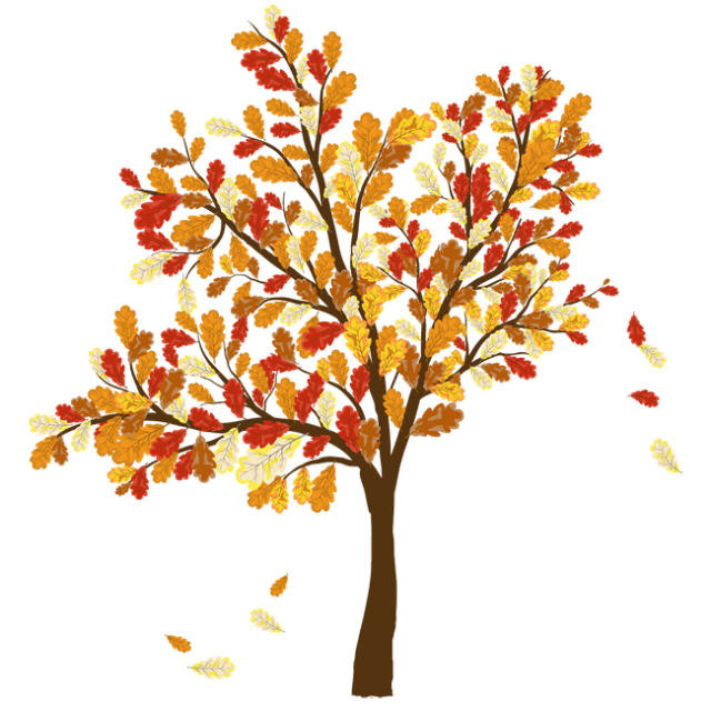 Fall clipart autumn begins. Life of a leaf