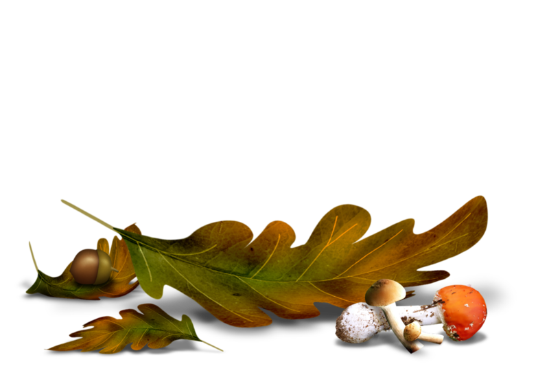 Fall Clipart L Automne Picture 1053615 Fall Clipart L Automne