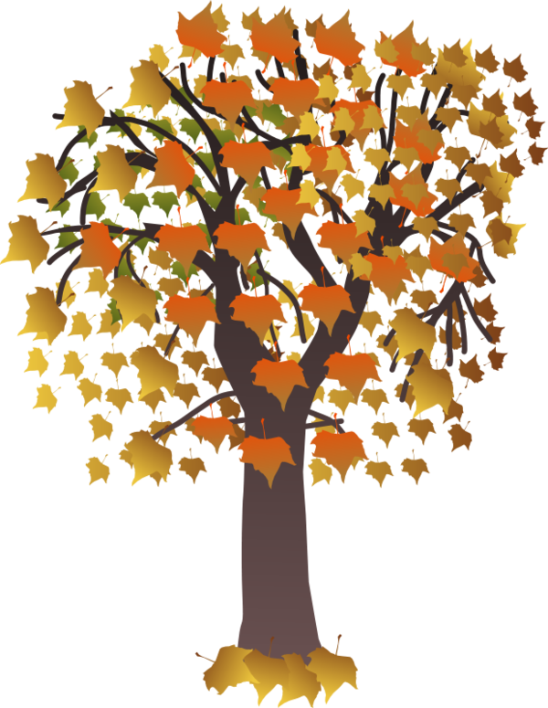 Fall clipart maple tree. Arbre tubes png pinterest