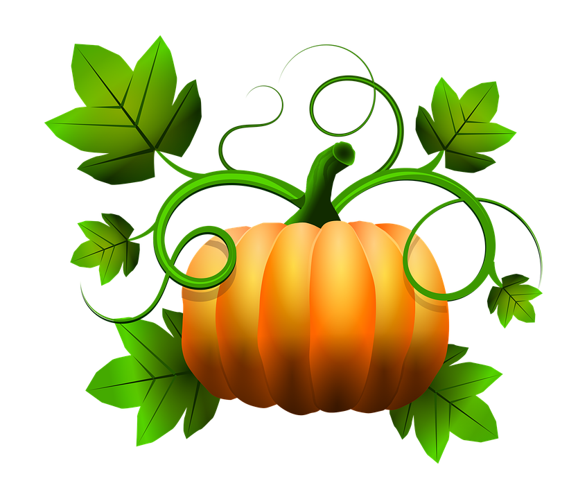 Squash pencil and in. Fall clipart november