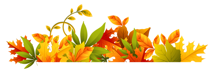 Fall flower png. Flowers border new transparent