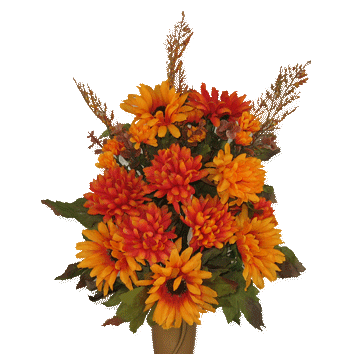 flowers for free. Fall flower png