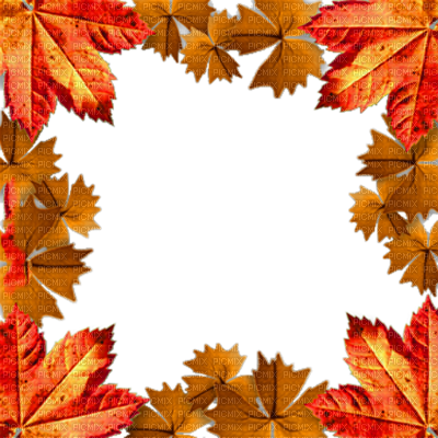 Autumn automne leaves frames. Fall frame png