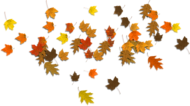 Fall leaves and pumpkins border png.  pile of graphic