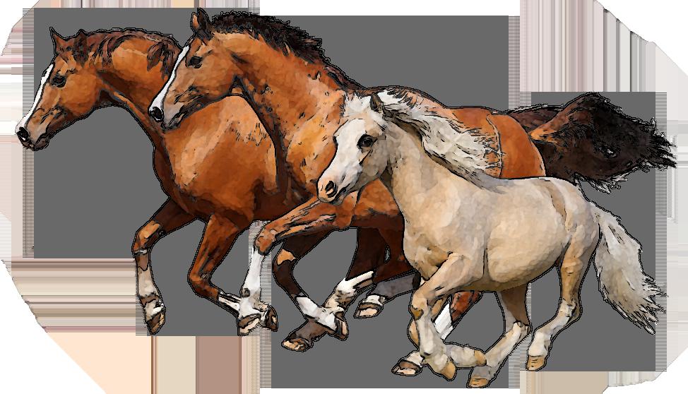 Clip art of horses. Clipart horse equine
