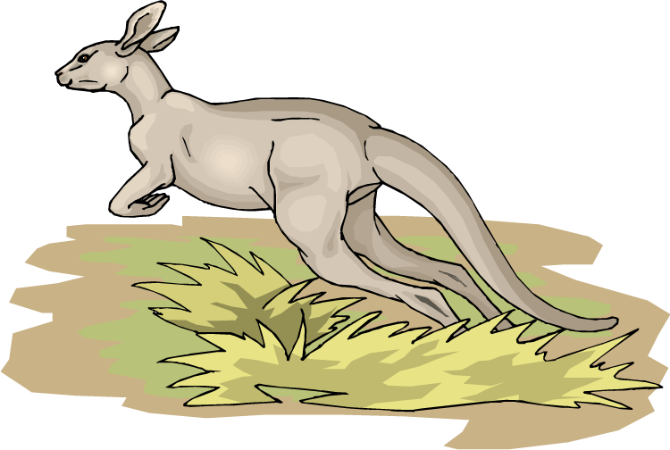 Free jumping. Kangaroo clipart foot