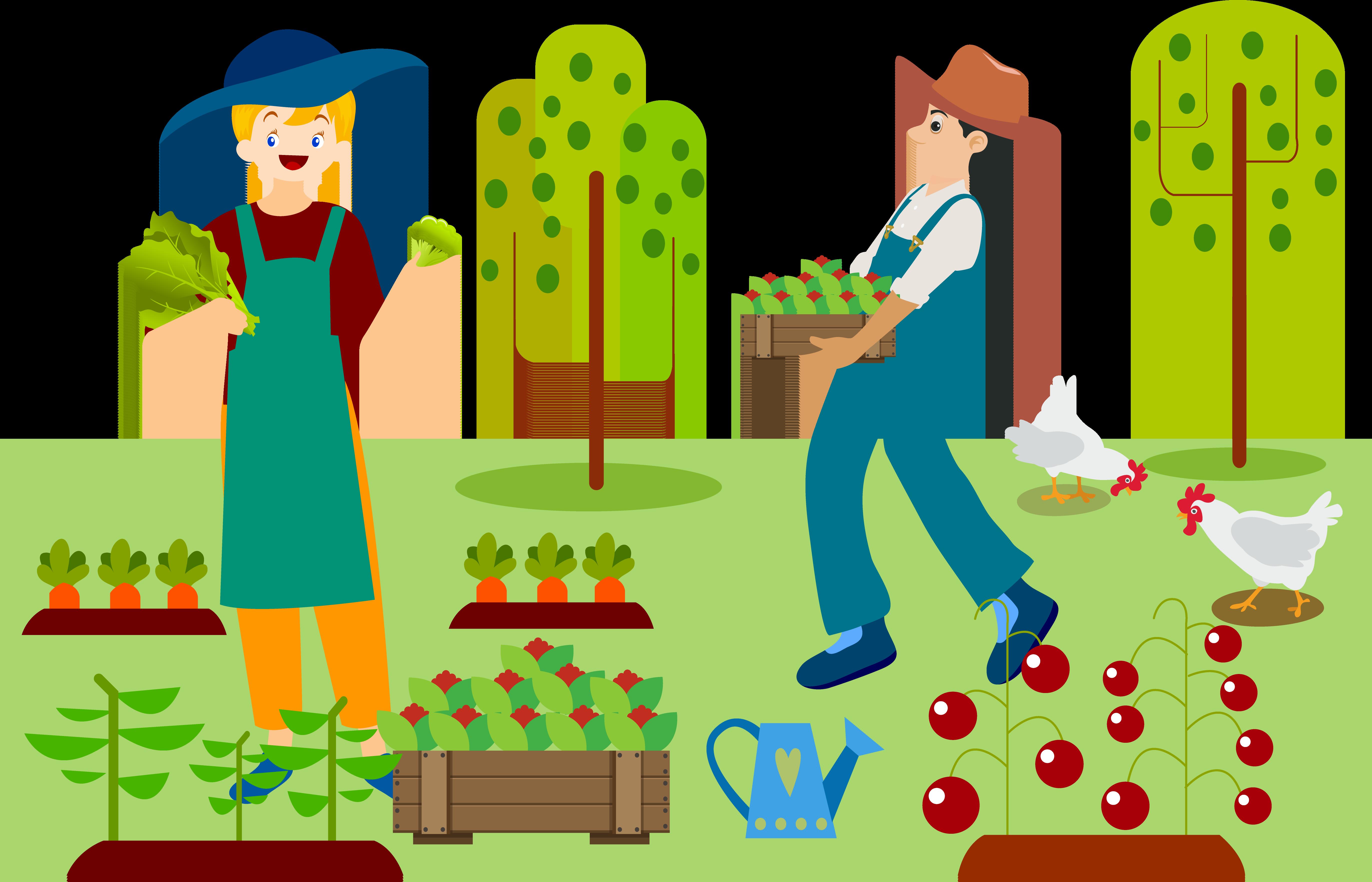 Agriculture farmer drawing picking. Farming clipart organic farming