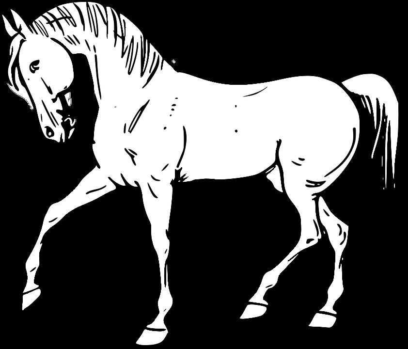 Png animals black and. Farm clipart horse farm