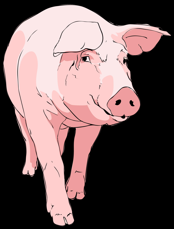 Farmer clipart livestock farming. Nice weekend pig google