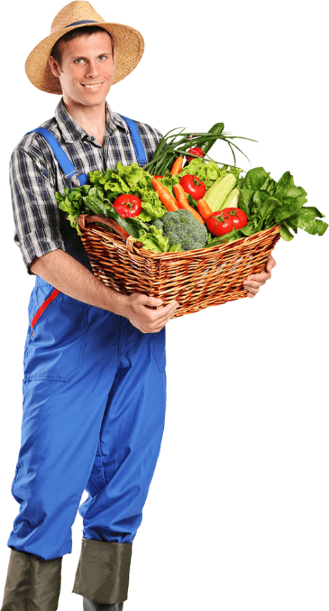 Farmer clipart male farmer. Png free images toppng