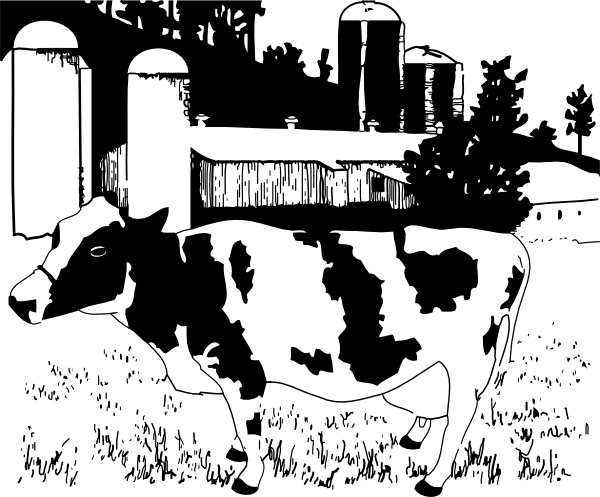 Cow on farm clip. Farmers clipart cattle farming