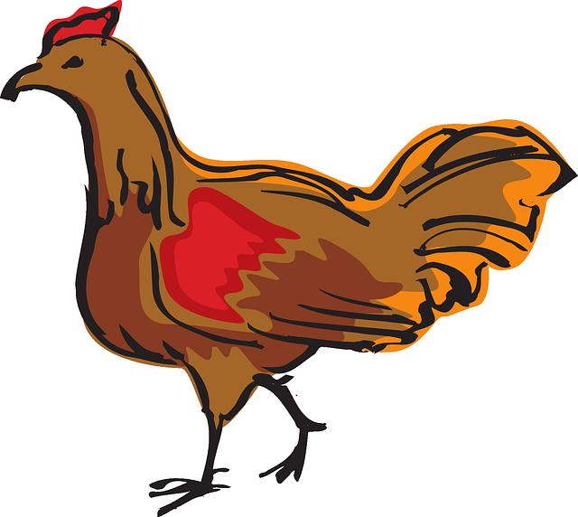 Farmers clipart gambar. Brown farm bird chicken