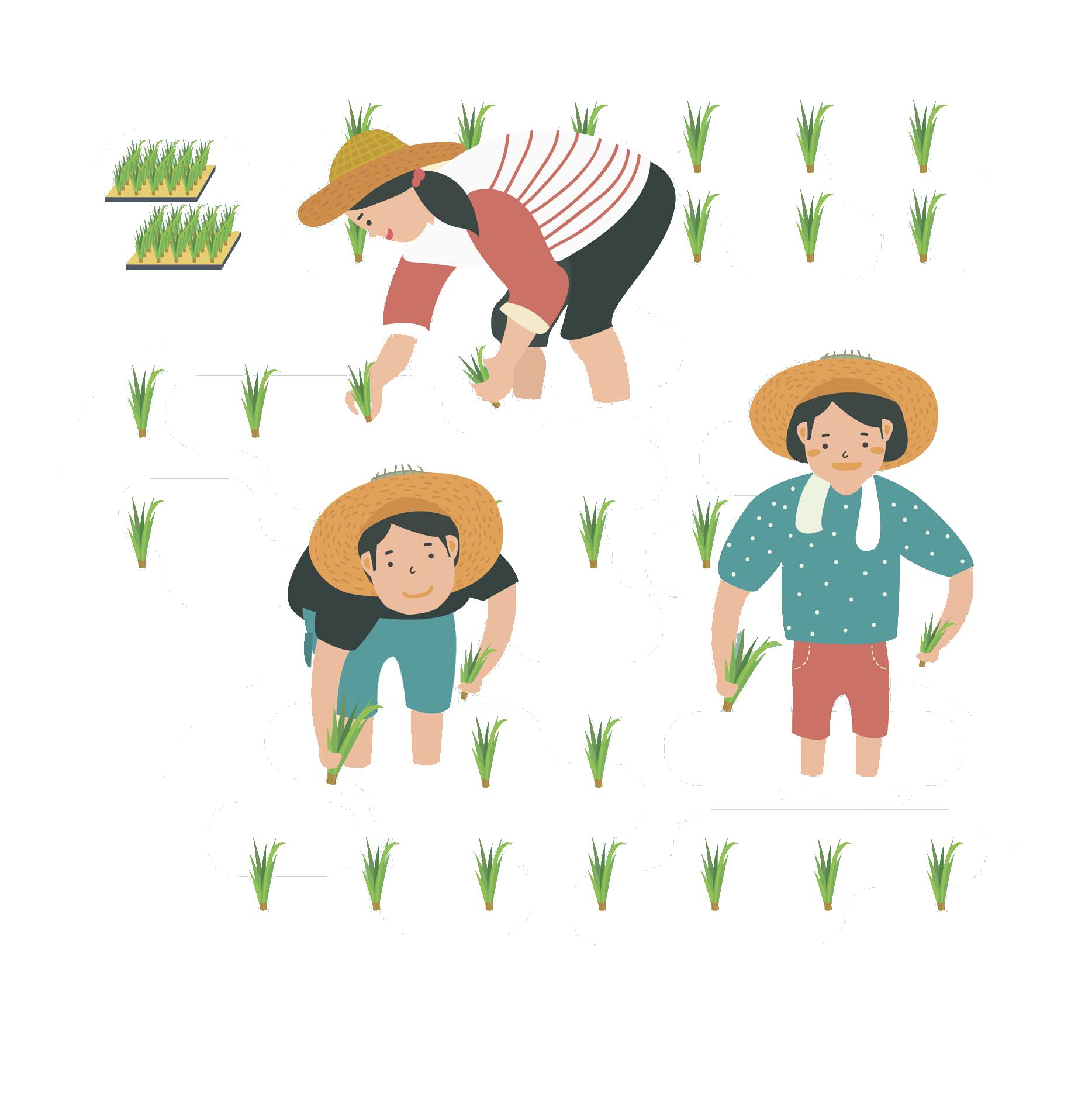 Transplanter uaddubbdubducbubbcuduccuadubacucd agriculture transplanting. Farming clipart rice farmer