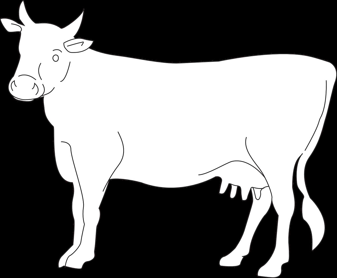 Cow cattle farm transparent. Farmers clipart livestock farming