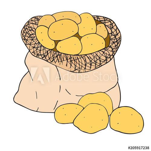 In a canvas bag. Farmers clipart potato farmer