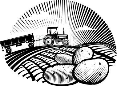 Farmers clipart potato farmer. Vector illustration in the