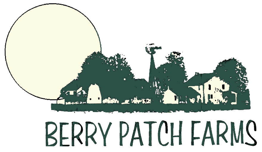 Berry patch farms organic. Farming clipart strawberry farm