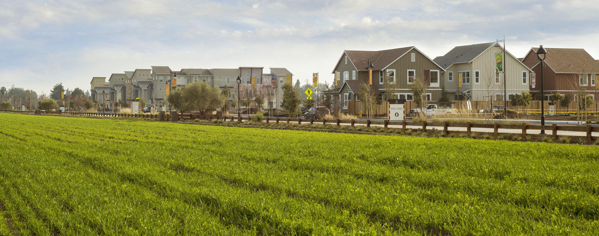 The cannery . Farmhouse clipart farm community