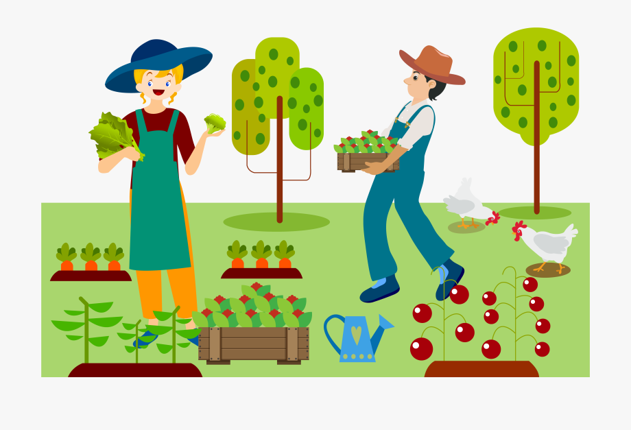 Farmers clipart vegetable farm.  farming png royalty