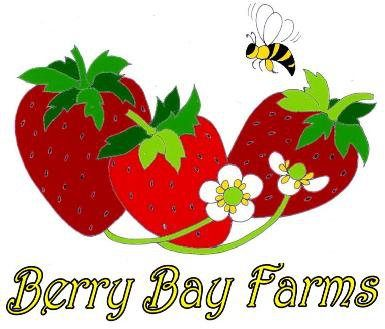 Farming clipart strawberry farm. Berry bay lakeland mom