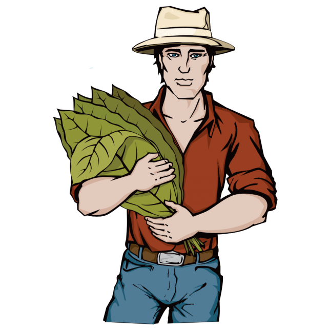 Illustration design business illustrations. Farming clipart tobacco farm