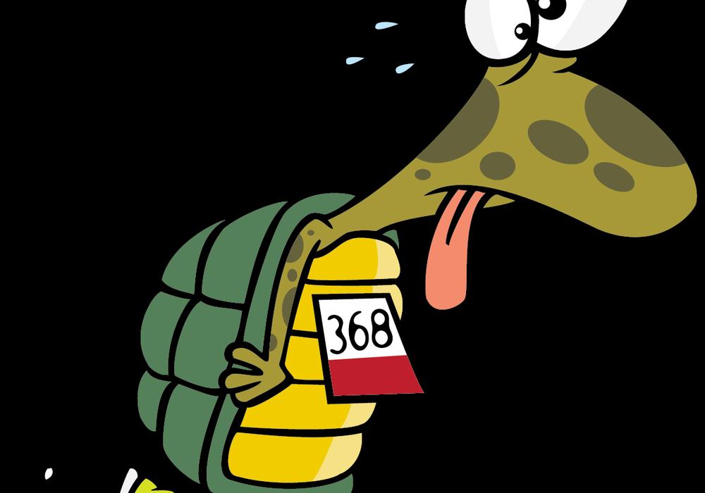 Running turtlemomblog page if. Fast clipart berlari