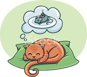 Cat dreaming with premium. Fat clipart different food