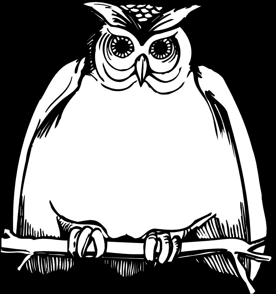 Free stock photo illustration. Fat clipart owl