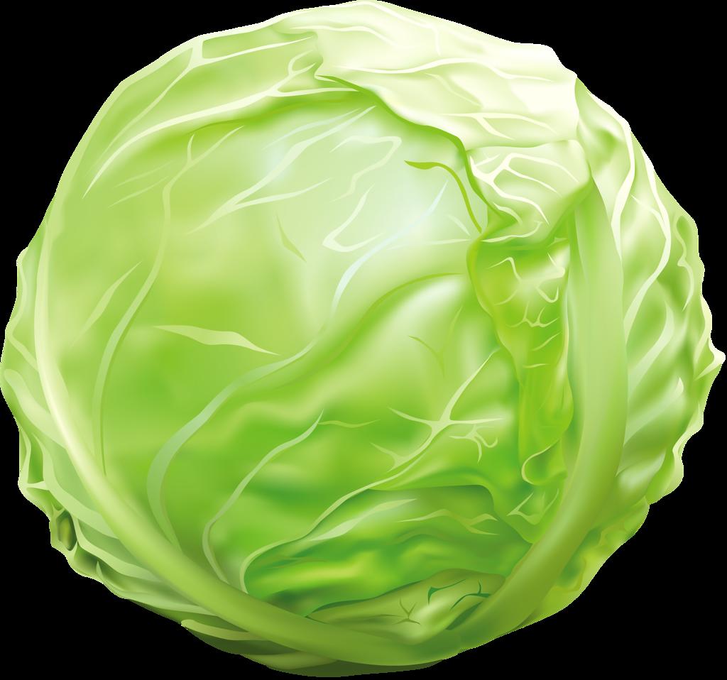 Fat clipart vegetable oil.  png pinterest clip