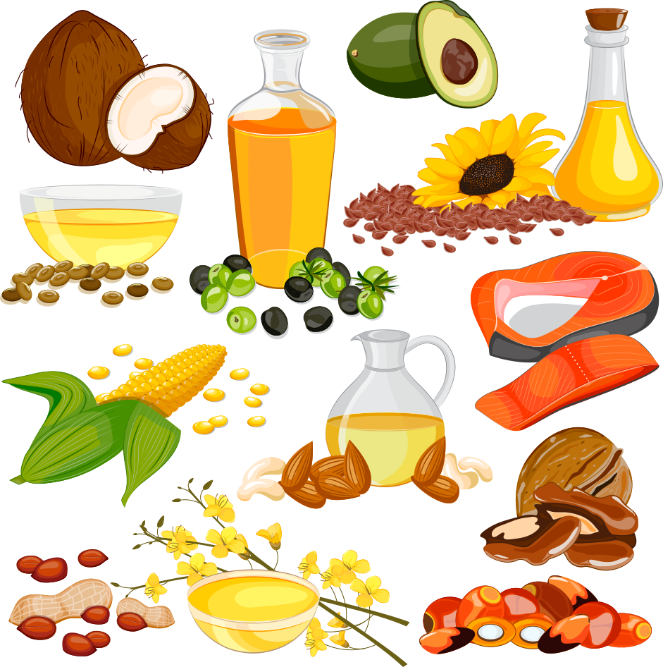 Fat clipart vegetable oil.  nut seed huge