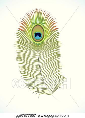 Eps vector abstract peacock. Feather clipart artistic