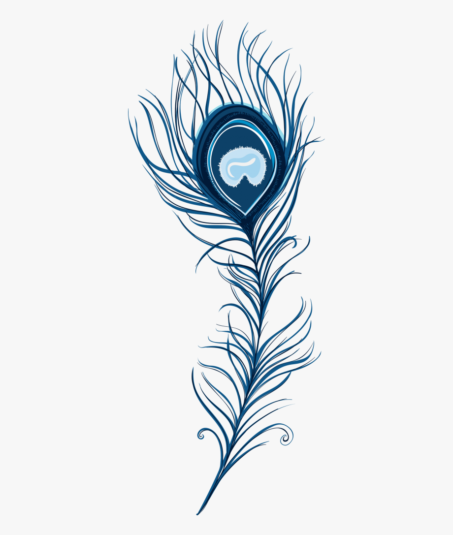 Feather clipart artistic. Peacock pic png images