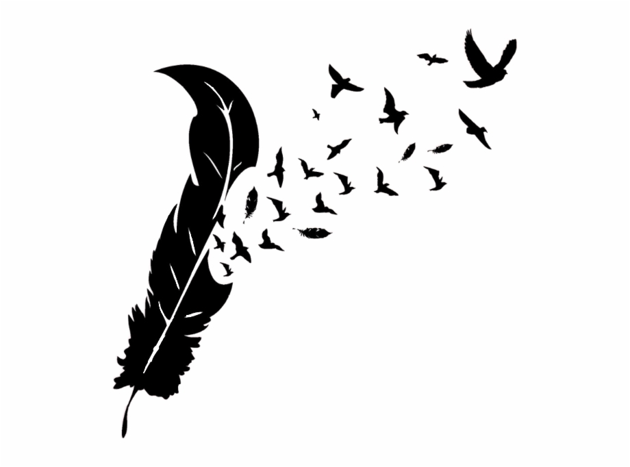 Feather clipart bird feather. With birds silhouette and
