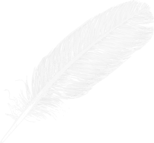 Large white transparent feather. Flutes clipart quill