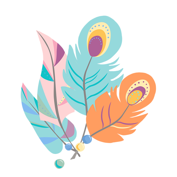 Pretty peacock pattern t. Feather clipart boho