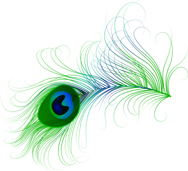 Peacock png clip art. Feather clipart boho