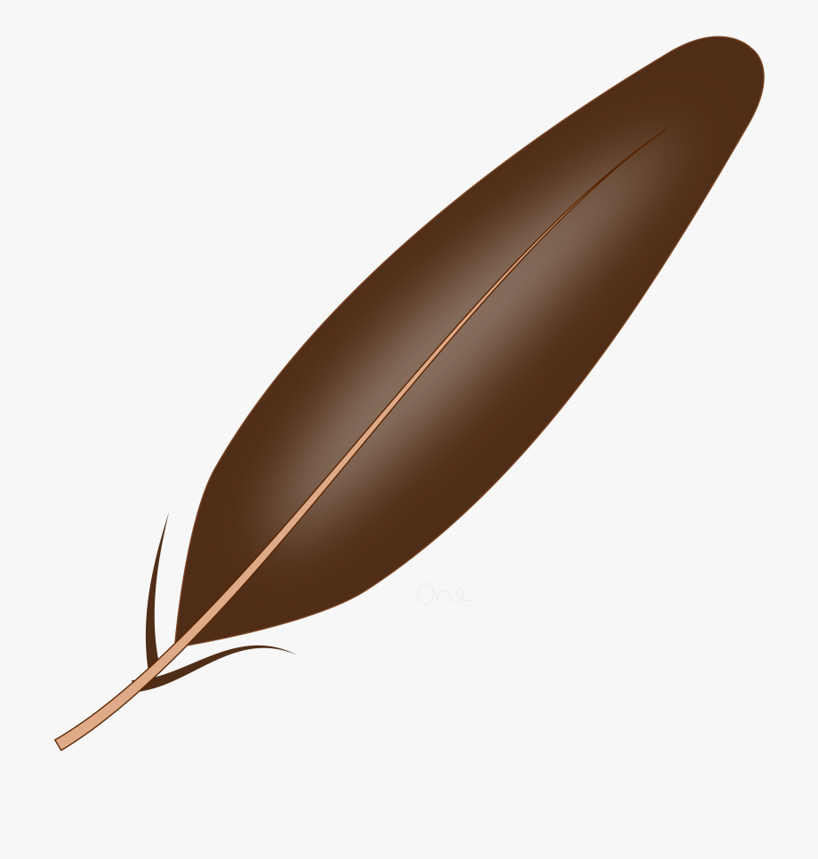 Free images . Feather clipart brown
