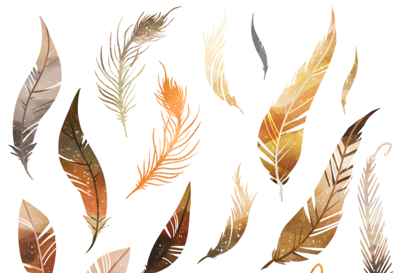 Feathers by digitalartsi thehungryjpeg. Feather clipart brown