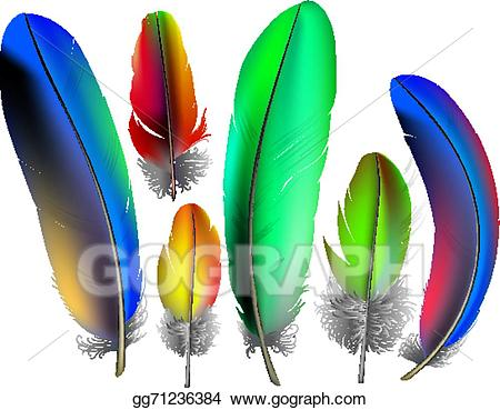 Feather clipart colored. Vector illustration feathers eps