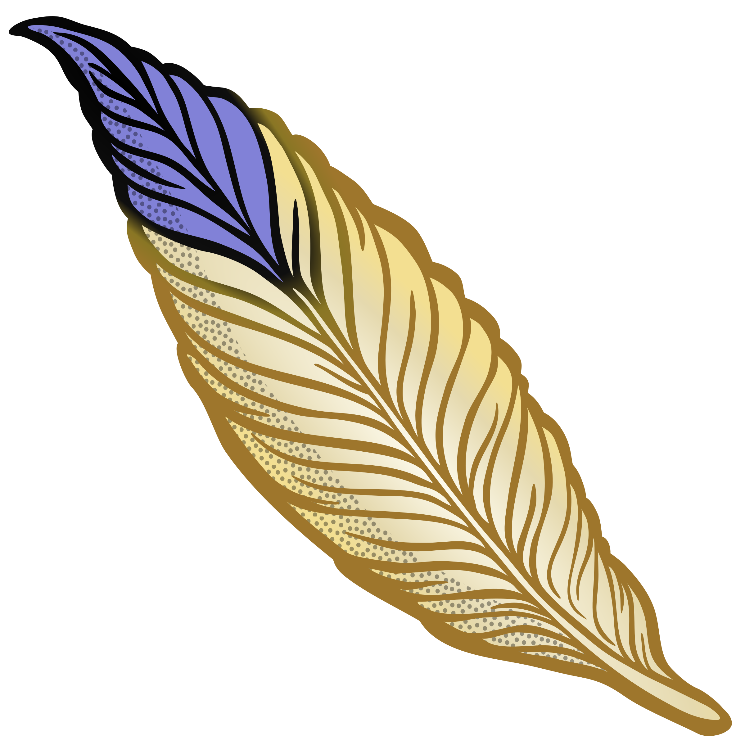 Feather clipart colourful feather. Coloured big image png